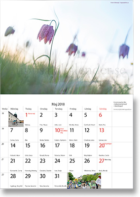 Uppsalakalendern 2018